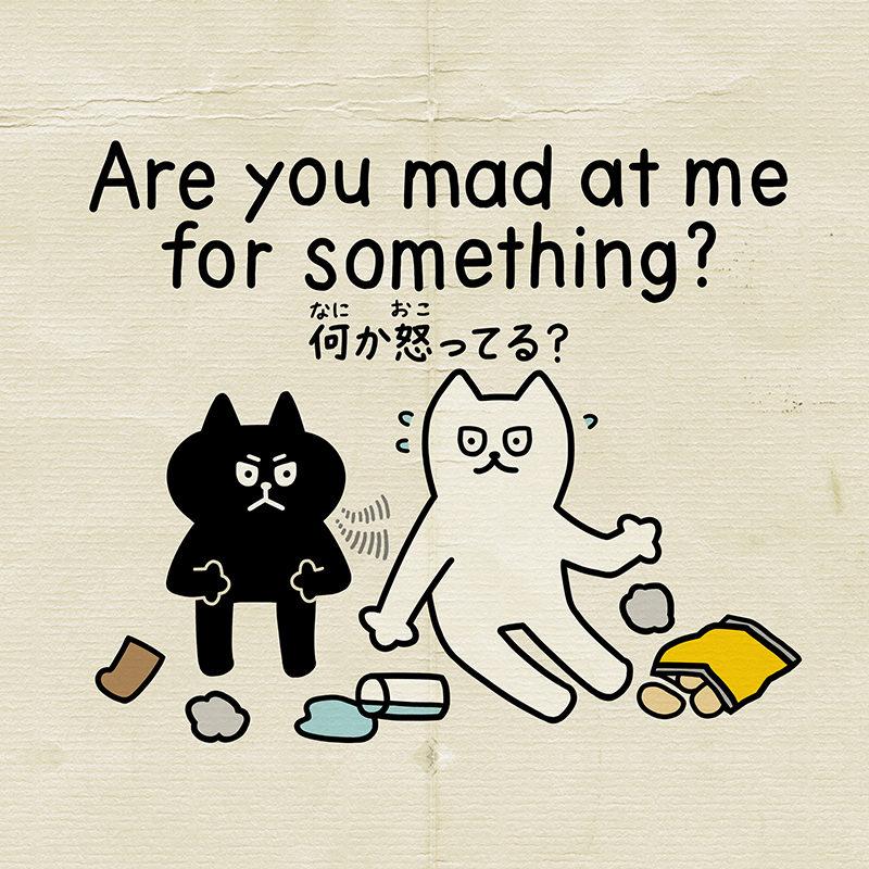 何か怒ってる?を英語で言うと